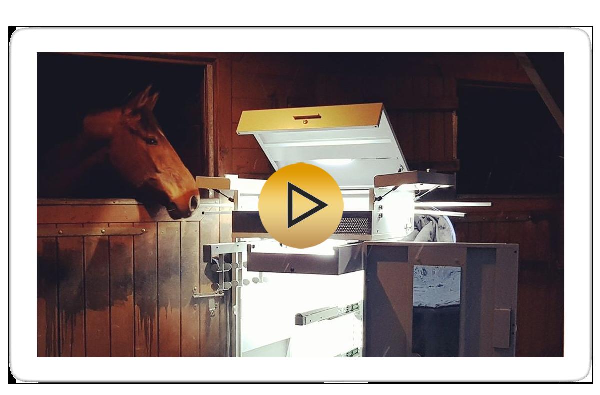 film-promocyjny-gp-horse